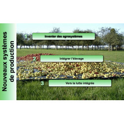 Agriculture du carbone