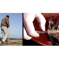 Les haies rurales - création et entretien