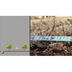 La plantation – préparer son chantier