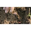 Gide pratique de la vie des sols