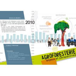 Agroforesterie, enjeux et perspectives