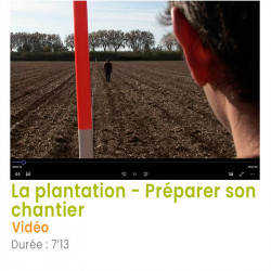 La plantation – préparer...